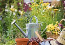 собрание садоводов