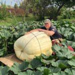 Андрей Гусев гигантская тыква