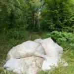 мешки с мусором в парке
