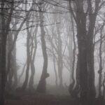 мистические места Подмо